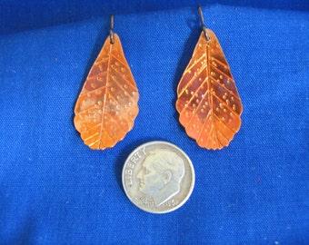 Mountain mahogany leaf earrings