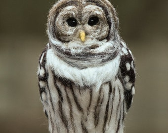 Barred Owl wool felted handmade bird