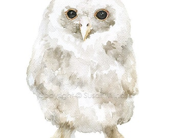 Baby Tawny Owl Watercolor Giclee - 4 x 6 - Watercolor Painting Fine Art Reproduction Print