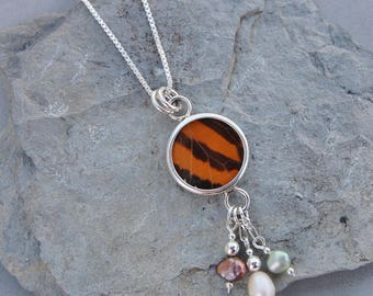 """Real Monarch Butterfly Wing Sterling Silver Necklace Pendant Genuine Pearls Rainbow 24"""" Box Chain"""
