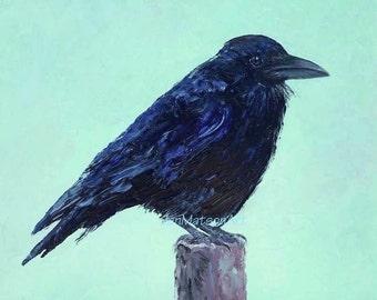 RAVEN painting, FRAMED bird art, original oil bird painting, black bird, by Jan Matson