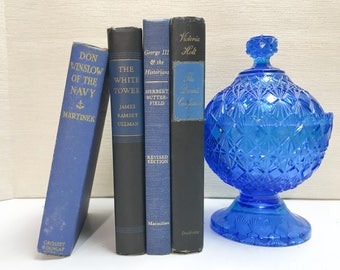 Black and Blue Decorative Books