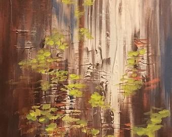 Redwood Rendevouz