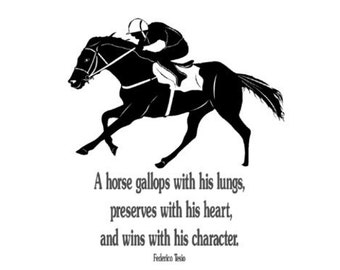 Horse decal-Horse Race Quote-Horse sticker-large 40 x 45 inches wall decal