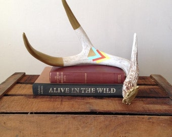 Painted Antler Art Gold Tips Triangle