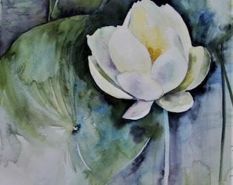 American Lotus, Original Watercolor