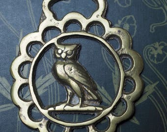 Vintage or Antique Owl Horse Brass  - For Wisdom - Folk Magic, British, Pagan, Wisdom - Rare