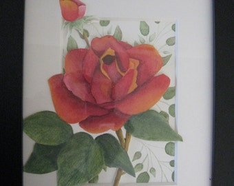 Watercolor Pencil Peace Rose Black Frame and White Matt