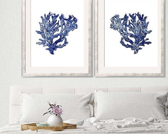 Coral Art, Blue Coral Print, Blue Wall Art,  Coral Wall Art, Sea Coral Prints, Coral Wall Art, Coral Print, Chinoiserie, Blue Coral Prints