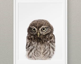Forest Animals Set Owl Wall Prints, Forest Nursery Wall Art, Woodlands Animal Nursery Prints, Animal Nursery Decor, Forest Owl Art - Owl
