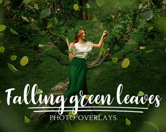 45 Green falling leaves photo overlays, Summer overlays, png overlay, branch overlay, photoshop overlays