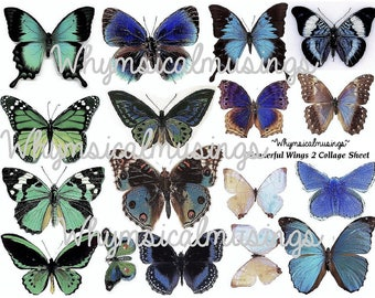 Digital Collage Sheet~ Wonderful Butterfly Wings 2~ Fairy~ Ephemera~ Instant Download