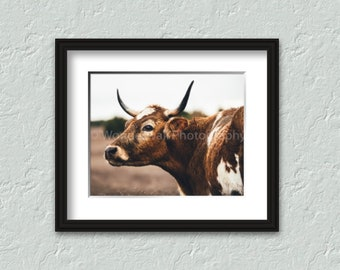 A Bull After The Rain - Free Shipping