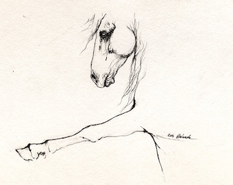 Andalusian horse original pen drawing