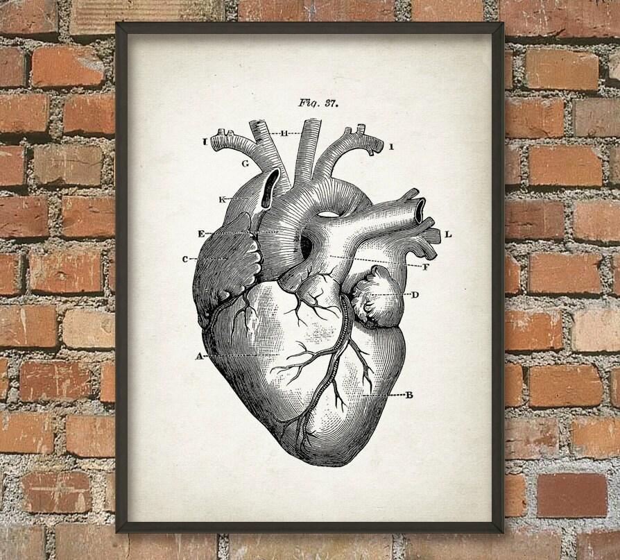 Herz-Anatomie Wand Kunst Poster Vintage Heart Buch Platte