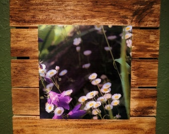 Wild Flower Wall Art