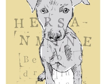 Hand Drawn Beautiful Whippet Puppy Stock Print 6x4 Postcard Size
