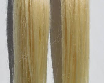Bleached Blonde Hair Pigtails