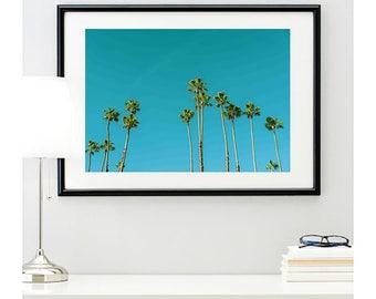 Long Beach Palm Trees Sky, photo print, summer vibes, tropical decoration, home decor, palm tree wall art, @richardlephoto