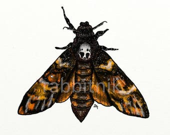 Deaths head hawkmoth print