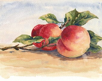 fruit painting- Two Peaches- watercolor art print