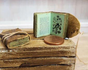 Very old Herbal book Miniature book 12th scale