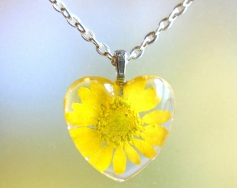 Real Yellow Daisy Pressed Flower  Heart Glass Necklace