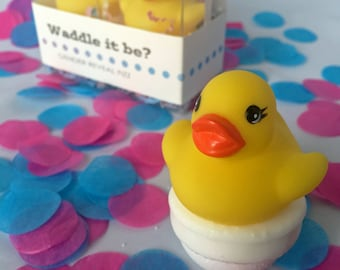 Waddle It Be? Gender Reveal Fizz with Rubber Duck