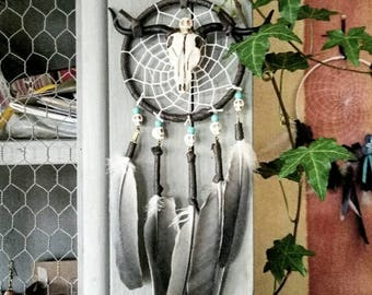 Dream catcher skull, small dreamcatcher, Buffalo head, Brown, turquoise, gray, decorative Native American, ethnic, cruelty free feathers