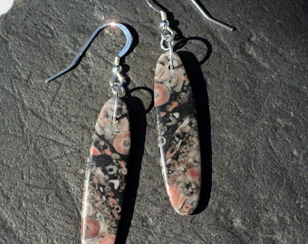 Feather Stars - Ancient Fossil Crinoid Sterling Silver Earrings
