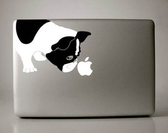 Bella the French Bulldog Sniffs Apple Decal Macbook Laptop