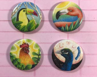 The fabulous favs magnet 4 pack