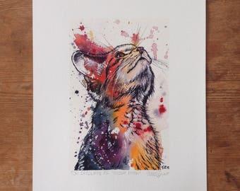 Scottish Wildcat Kitten A5 Print
