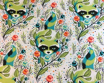Raccoon by Tula Pink Fabric
