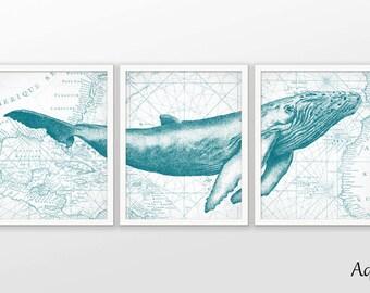 Baleine à bosse mur affiche d'Art lot de 3 - baleine Art Print - baleine à bosse affiche - baleine à bosse Wall Art - Biologie Marine Aqua Marine AB579