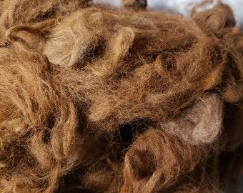 Picked Alpaca Fiber - Medium Brown