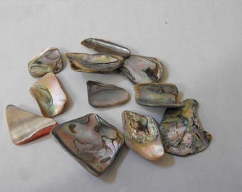 Abalone Shell Cabochons For Wire Wrap Or Jewelry Pendants