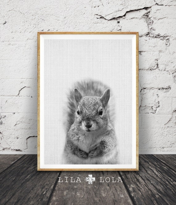 Squirrel Print, Woodlands Animal Wall Art, Nursery Decor, Black and White, Modern Minimal, Instant Printable Digital Download, Kids Room Art