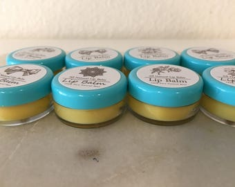 Winter Lip Balm/ Shea Butter/ Very Moisturizing/ 5g/ BPA Free/ Party Favors/ Holiday/ Gift