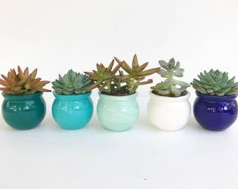 Handmade Ceramic Planter Ceramic Pot for Succulent or Cactus