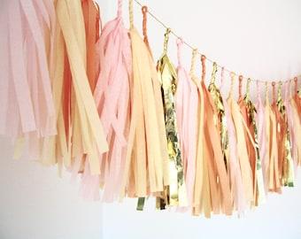 Gold, Blush Pink, Peach, Champagne Tassel Garland - Nursery Decor . Birthday Party . Baby Shower Decorations