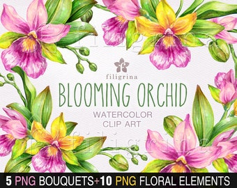 Orchids WATERCOLOR clip art. 5 PNG floral compositions, bouquet, round wreath. 10 PNG botanical elements, tropical flowers. Read how to use