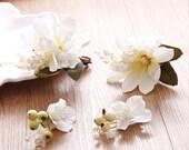Women Hair Clips, Wedding Hair Clips Set, Bridal Headpiece, Bridal Hair Accessories (White) 4 Pieces/ Set