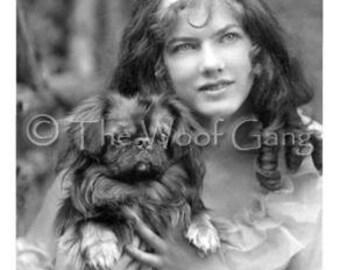 Pekingese Show Dog Rex, Upstate New York, c. 1904 Vintage Photo - Note Card