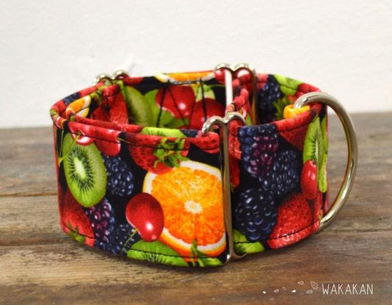 Martingale dog collar model Tutti Frutti. Adjustable and handmade with 100% cotton fabric. Orange, kiwi, grapes, cherries, fruits, Wakakan