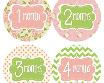 Monthly Baby Stickers Baby Monthly Stickers Girl Green Pink Floral Stickers INSTANT DOWNLOAD Printable Baby Shower Gift Photo Prop -Jenny-R