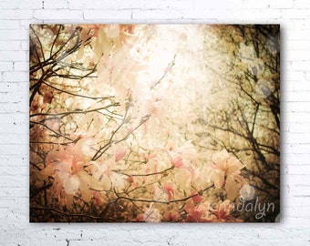 magnolia tree print - pastel pink flower photography - magnolia flowers