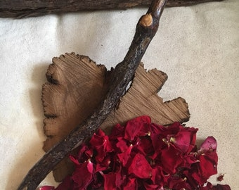Wild~Rose~Wood~Wand~Love~Adoration~Aphrodite~Secrets~Pagan~Wiccan~Witch~Thorns~
