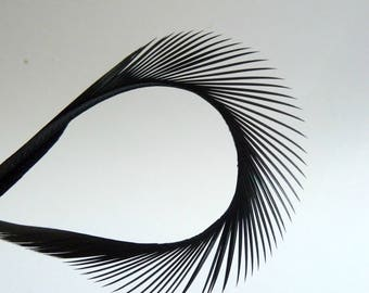 Black Goose Biot Feathers Trim for Hats Fascinators Crafts Costumes One Dozen 5 to 8 Inches