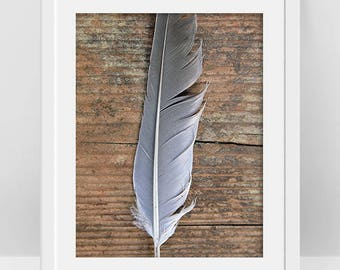 Feather Print, Bird Feather Art, Tribal Print, Modern Rustic Decor, Rustic Wall Art, Cool Poster, Boho Room Decor, Feather Poster, Printable